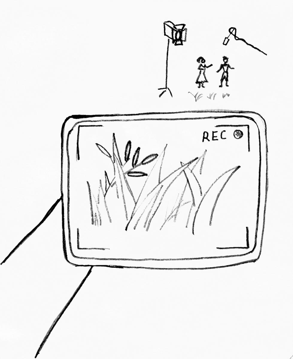video-skritoy-kameroy-v-kustah-i-v-drugih-mestah